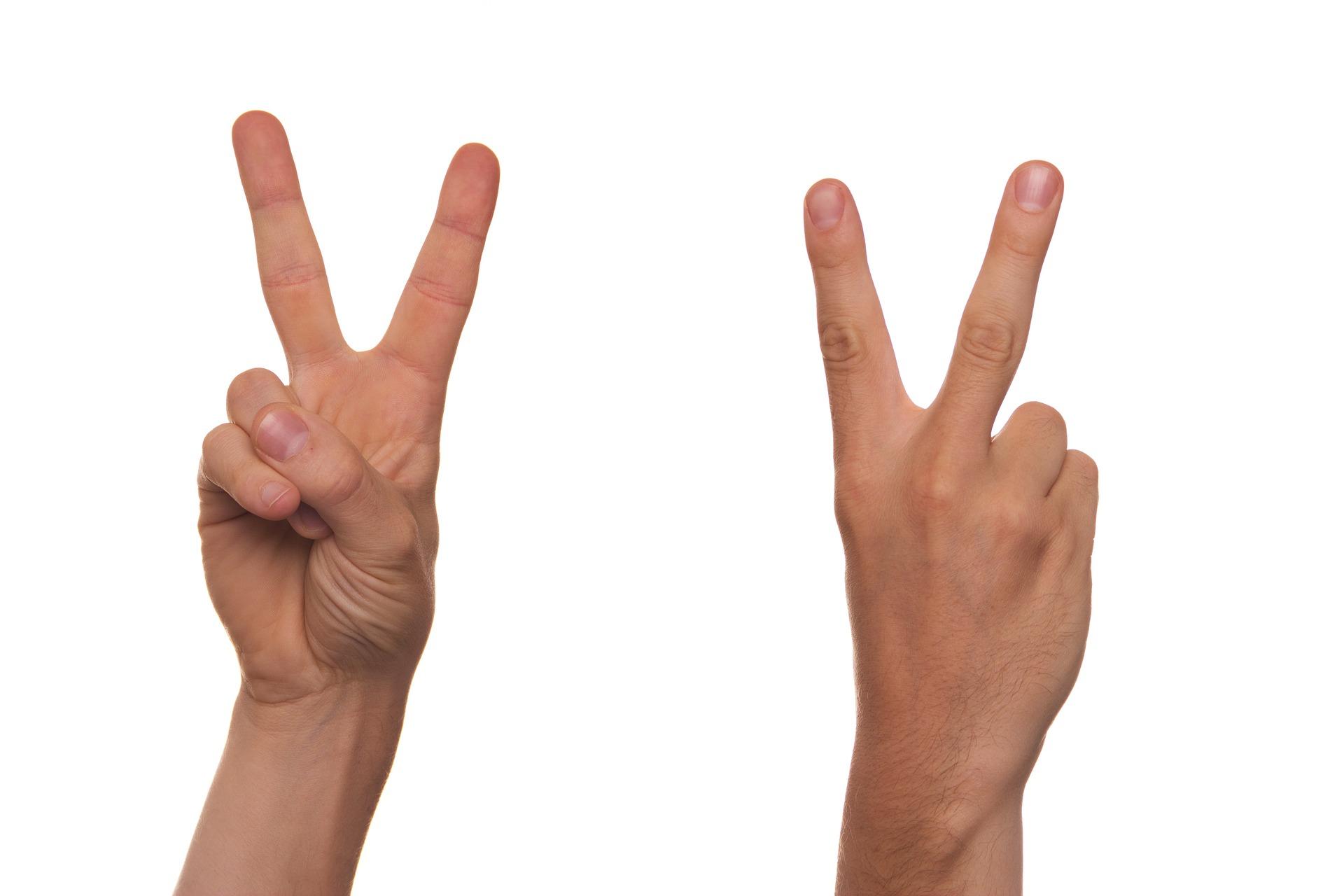 2 mains