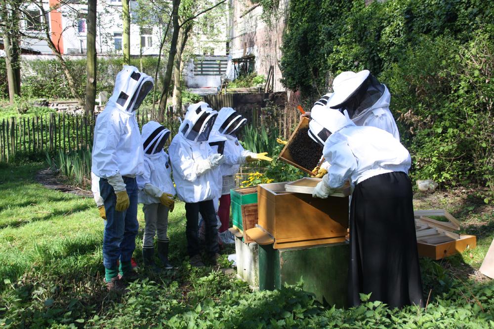 abeilles à l'espace Kessels