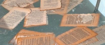 Livres et lecteurs en liberté